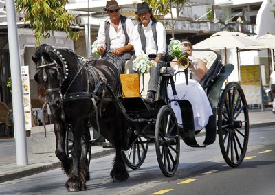 lanarote-wedding-transport-horse-and-cart
